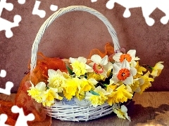 apatite, wicker, Daffodils, Spring, basket, Flowers, narcissus