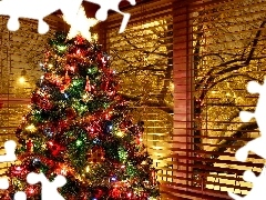 Window, christmas, Coloured, winter, christmas tree