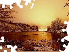 winter, lake, Park