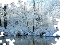 River, viewes, winter, trees