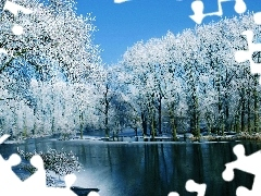 trees, River, winter, viewes