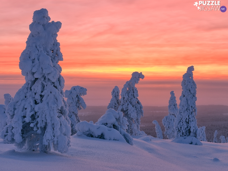 snowy, winter, viewes, Great Sunsets, trees, snow