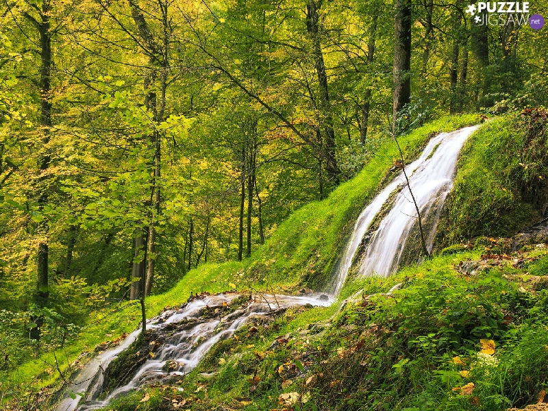 VEGETATION, rocks, forest, Green, waterfall