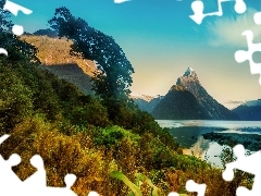 New Zeland, Bush, mountains