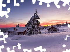trees, winter, Great Sunsets, country, viewes, Houses