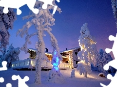 Home, winter, trees, viewes, Snowy, Floodlit