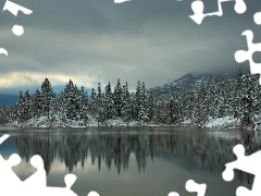 Mountains, lake, winter, forest